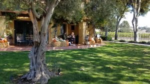 Two Wineries of the Santa Rita Hills